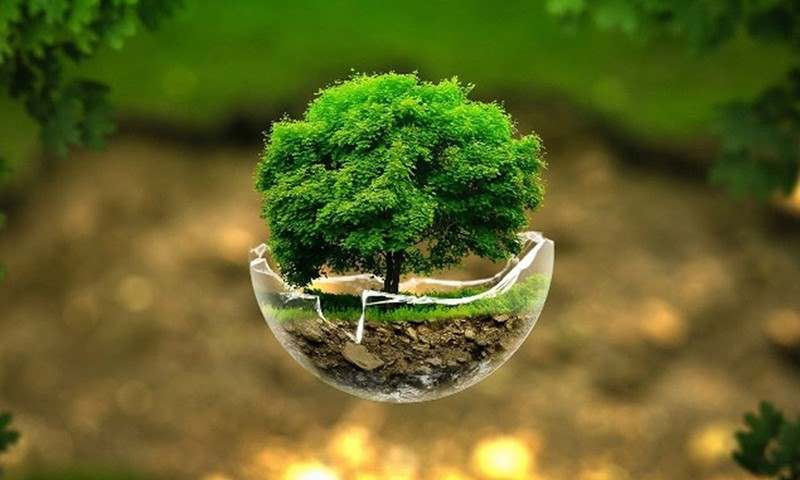 ترجمه تخصصی رشته محیط زیست