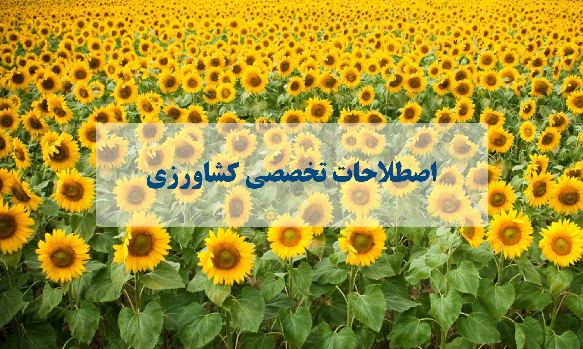 اصطلاحات کشاورزی